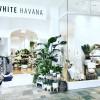 White Havana | Westfield Chermside