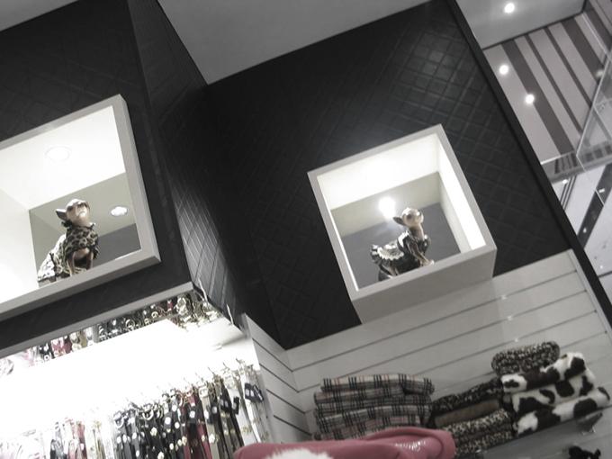Posh Pets Carindale | Retail shop interior dersigners | Gold Coast and Brisbane