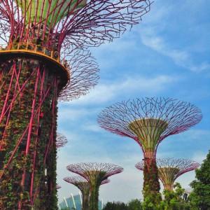 Man made structures imitating nature