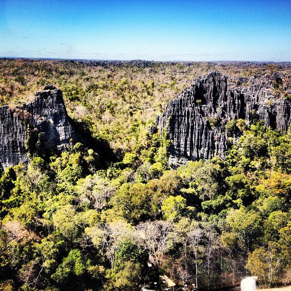 Tsingy Forest Madagascar