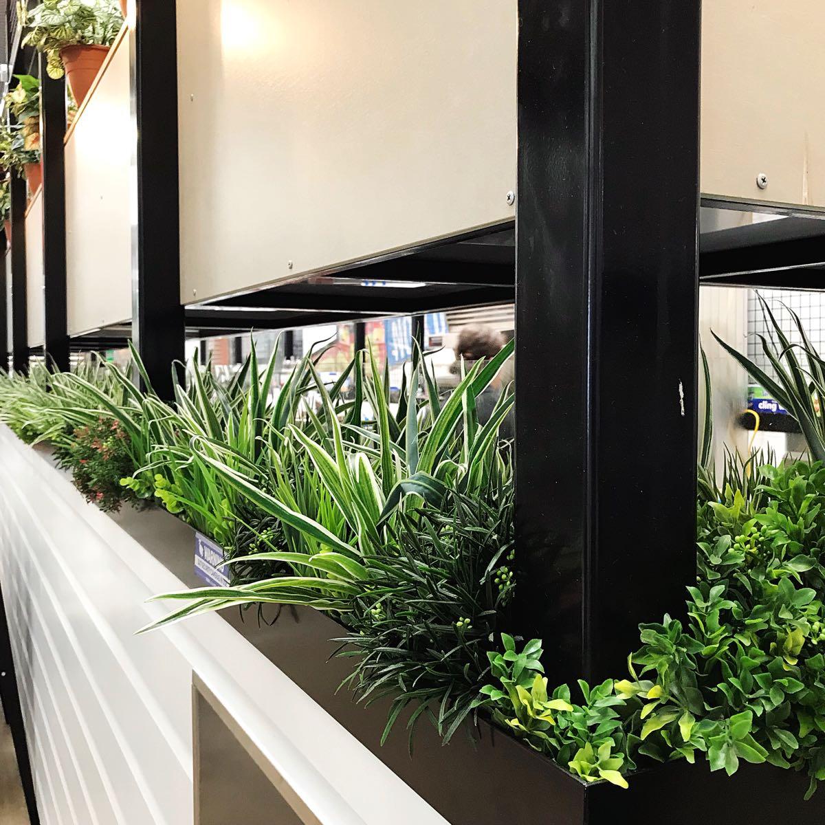 Cafe designer Gold Coast