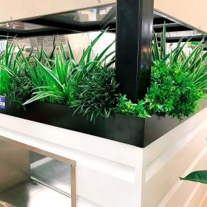 Cafe retail designer Gold Coast
